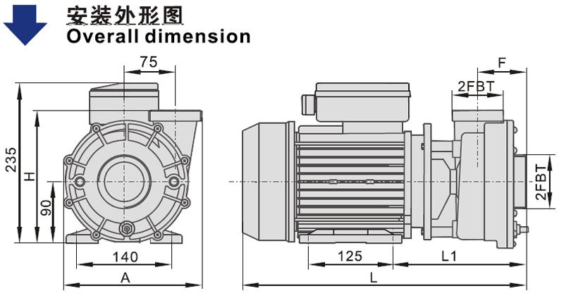 JT apd200 super flo spa pumps Supply for SPA-2